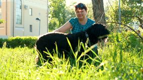 Grand chien noir et son propriétaire, soin des animaux familiers sur la promenade clips vidéos