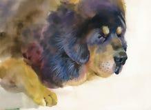 Grand chien triste se trouvant sur le fond beige illustration stock