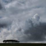 Grand ciel avec les nuages et la petite forêt éclairés à contre-jour Image libre de droits