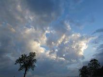 Grand ciel, nuages lumineux, silhouette de deux arbres Image libre de droits