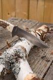 Grand couteau de chasse coincé dans le rondin Photographie stock libre de droits