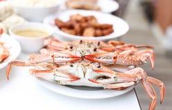 Grand crabe de cheval cuit à la vapeur photos libres de droits