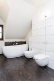 Grand design - bath, toilet and bidet Stock Photography