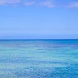 Grand dos d'océan Image libre de droits
