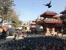 Grand dos de Durbar à Katmandou Images libres de droits