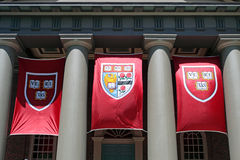 Grand dos de Harvard, Cambridge Images libres de droits
