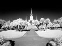 Grand dos de Jackson à la Nouvelle-Orléans Photos libres de droits