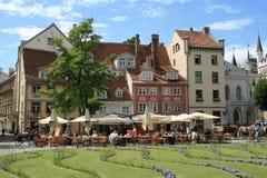 Grand dos de Livu Laukums à Riga, Lettonie Photos libres de droits