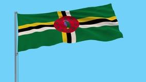 Grand drapeau d'isolat de tissu du Commonwealth of Dominica, longueur des prores 4k, alpha transparent illustration stock