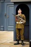 Grand Ducal Palace Guard Stock Photos