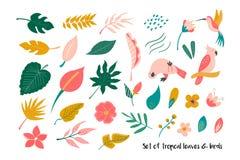 Grand ensemble de feuilles et d'oiseaux tropicaux lumineux illustration stock