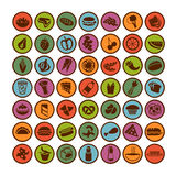 Grand ensemble de graphismes de nourriture illustration stock