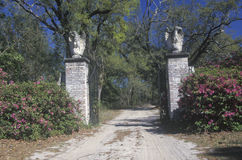 Grand entrance to a plantation Royalty Free Stock Photography