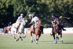 Grand Final of 70th Argentina Pato Open. Royalty Free Stock Images