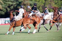 Grand Final of 70th Argentina Pato Open. Royalty Free Stock Image