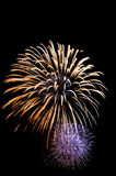 Grand firework Royalty Free Stock Photo