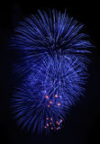Grand firework Royalty Free Stock Images