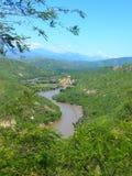 Grand fleuve Image stock