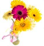 Grand gerbera dans un bouquet sur un fond blanc Image stock