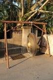 Grand gong d'or dans un temple bouddhiste, où vous pourriez voir combien propre Photo libre de droits