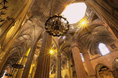 Grand gothic cathedral stock photos