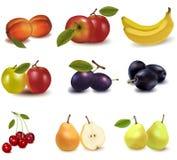 Grand groupe de fruit différent. Photo libre de droits