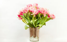 Grand groupe de tulipes roses sur le fond blanc Image stock