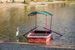 Grand héron blanc et petit bateau à l'oasis de Huacachina - AIC, Pérou images stock