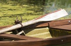 Grand héron chez le Lac Balaton Photographie stock