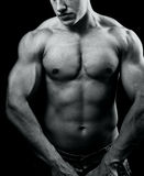 Grand homme sexy musculaire avec le fuselage puissant Photo stock