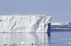 Grand iceberg dans le son d'Antacrtic Photos stock
