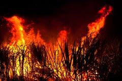Grand incendie Photos libres de droits