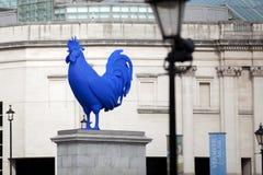 Grand jeune coq à Londres Photos libres de droits