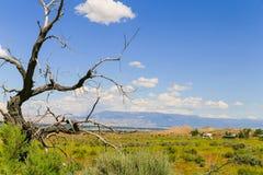 Grand Junction nella distanza Fotografia Stock Libera da Diritti