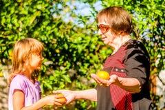 Grand-mère donnant sa clémentine de petite-fille photos stock