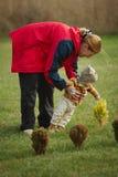 Grand-mère heureuse avec le petit-fils en parc Photo stock