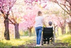 Grand-mère pluse âgé dans le fauteuil roulant avec la nature de petite-fille au printemps Images libres de droits