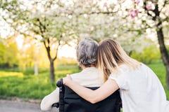 Grand-mère pluse âgé dans le fauteuil roulant avec la nature de petite-fille au printemps Images stock