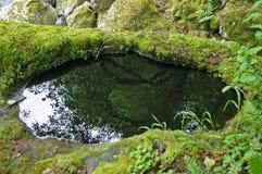 Magma foncé Image stock