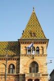 Grand marché Hall/Budapest Photo libre de droits
