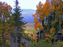 Grand Mesa Fall Royalty Free Stock Image