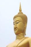 Grand moine d'or Photographie stock libre de droits