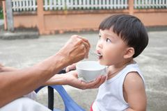 Grand mother feeding baby outdoor stock photography