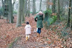 Grand mother and grandchild little girl walking together with the dogs in the countryside suburb area royalty free stock images