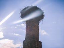 Grand nid pour des cigognes Photographie stock libre de droits