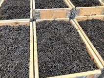 Grand nombre des vis noires organisées dans des boîtes en bois Photo libre de droits