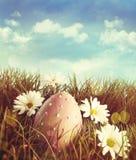 Grand oeuf de pâques dans l'herbe avec des marguerites Images stock