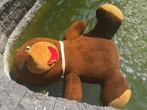 Grand ours de nounours dans une fontaine Images libres de droits