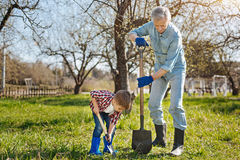 Grand-père faisant du jardinage dehors avec le petit garçon Photo libre de droits