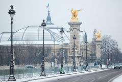 Grand Palais and Pont Alexandre III at winter Royalty Free Stock Photos